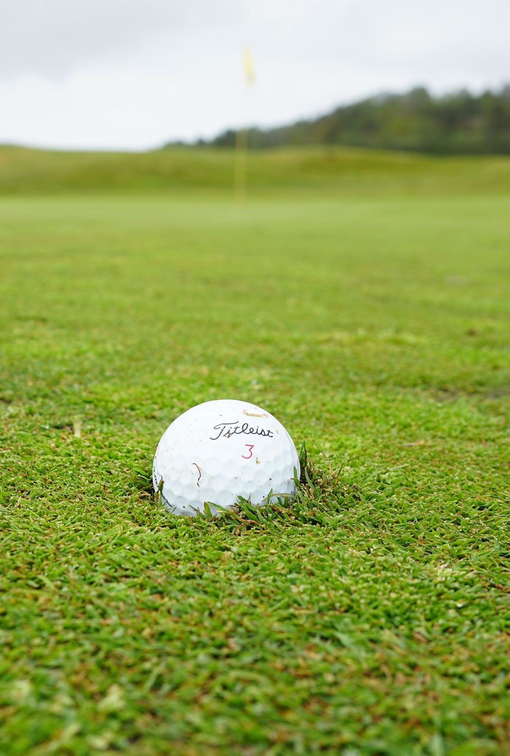 White Golf Ball on Green Grass Field